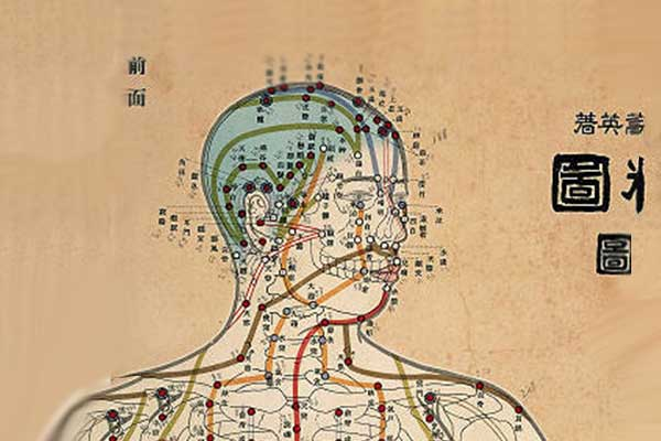 acupuncture-points-health-wellness-clinic